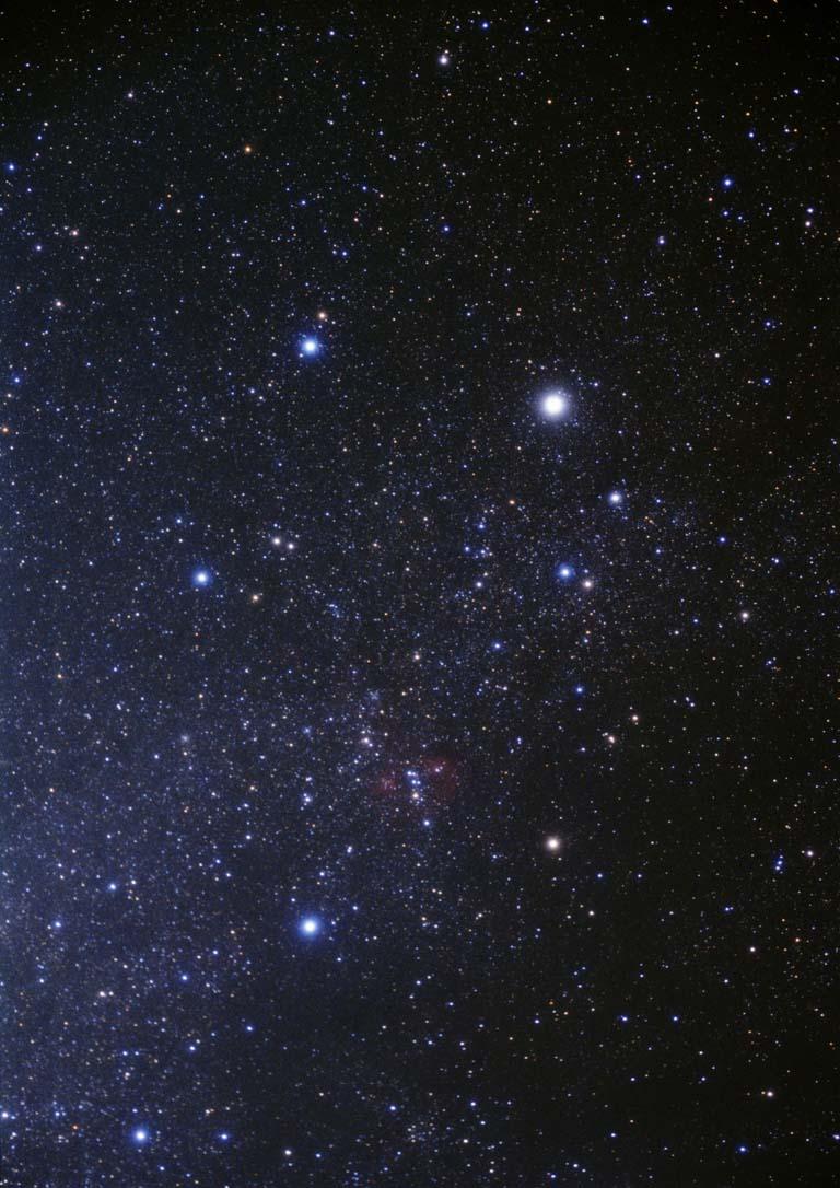 Identify this constellation.