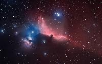Horsehead Nebula and Neighbors