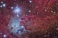The Fox Fur Nebula