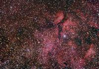 IC 1318 (Diffused Nebula around Gamma Cygni)