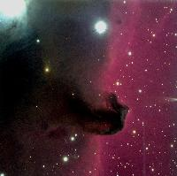 IC434 The Horsehead Nebula by Andy Monson & Bob Berrington