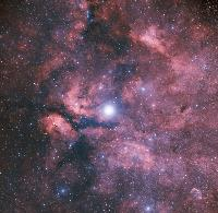 IC1318 by Mike Halderman (DSS)