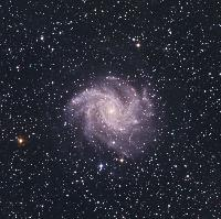NGC 6946 by Mike Halderman (DSS)