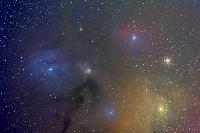 Antares-Rho Ophiuchus region by Thomas V. Davis