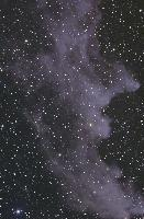 IC2118 Witch Head Nebula by Thomas V. Davis