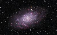 M33 Triangulum Galaxy by Thomas V. Davis