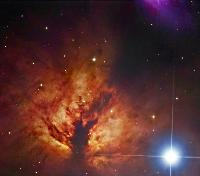 NGC 2024 (Flame Nebula) and IC 432 by Robert Gendler
