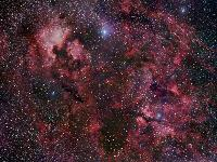 Northern Cygnus by Robert Gendler