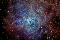 The Cosmic Web of the Tarantula Nebula; by Joseph Brimacombe