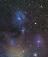 Rho Ophiuchus and Antares Nebula