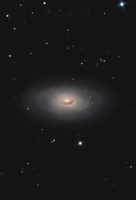 M64: The Black Eye Galaxy  by Andrea Tamanti