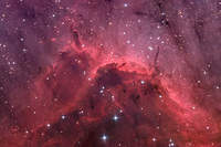 IC 5067: Emission Nebula Close-up by Russell Croman
