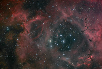 Dust and Light in the Rosette Nebula  by Nicolas Outters (Observatoire d'Orange)
