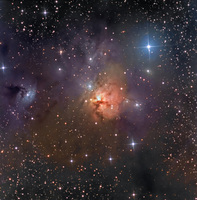 NGC 1579: Trifid of the North  by Don Goldman