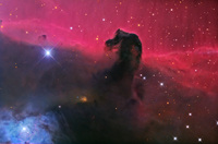The Horsehead Nebula in Orion by Adam Block, Mt. Lemmon SkyCenter, U. Arizona