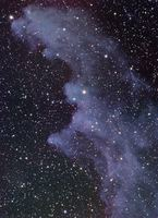 IC 2118: The Witch Head Nebula by Bernhard Hubl