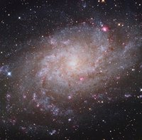 M33: Triangulum Galaxy by Paul Mortfield, Stefano Cancelli