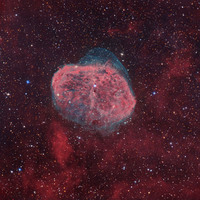 NGC 6888: The Crescent Nebula by Tony Hallas
