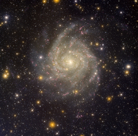 Hidden Galaxy IC 342 from Kitt Peak; T. Rector (U. Alaska Anchorage), H. Schweiker, WIYN, NOAO, AURA, NSF