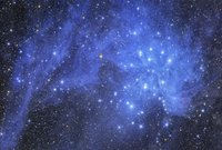 Pleiades and Stardust  by Tony Hallas