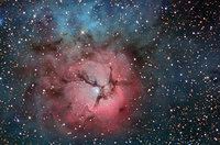 The Trifid Nebula in Stars and Dust by R. Jay GaBany (Cosmotography.com)