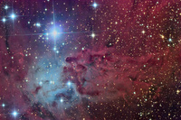 The Fox Fur Nebula  by Russell Croman