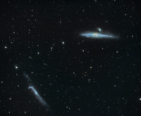 http://www.capella-observatory.com/images/Galaxies/NGC4631_4656Big.jpg