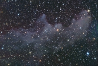 http://home.fuse.net/coldspringobservatory/IC-2118-Witch-Head-Nebula-W.jpg