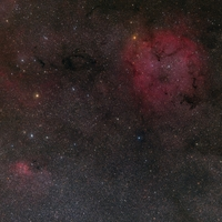 IC 1396 and Surrounding Starfield   by Thomas W. Earle