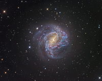 Messier 83 Spiral Galaxy by Rob Gendler